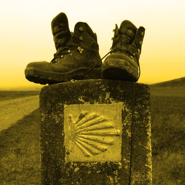 icons-opportunities-camino